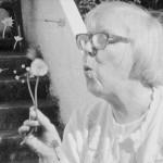 still-flower - Grandma Lo-fis